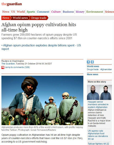 An Afghan tends to his opium poppy fields as US soldiers guard fields
